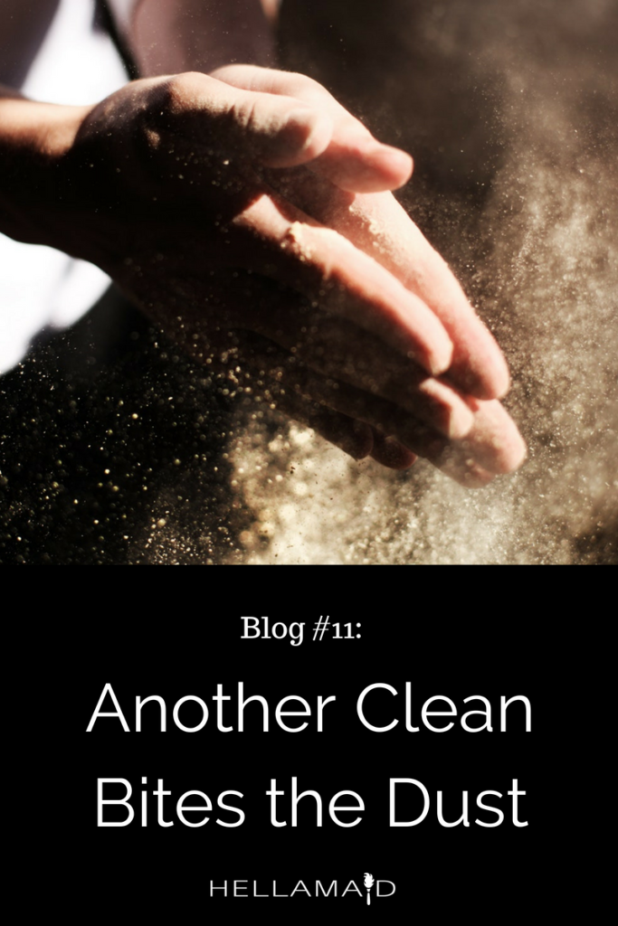 Another Clean Bites the Dust – Keeping Your Home Healthy